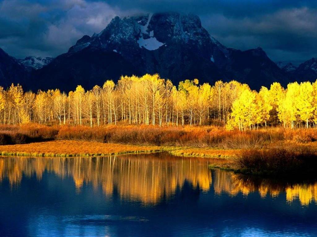 nature scenic wallpaper